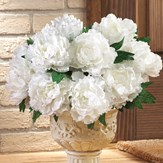 Floral Peony Bushes - Set of 3
