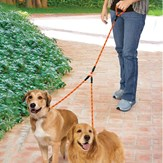 Tangle-free Braided Double Dog Walking Leash