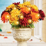 Solar Powered Colorful Mum Bushes Stakes - Set of 3